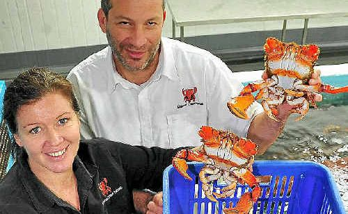 Alison Reed and Jason Sgro, of Noosa Spanner Crabs.
