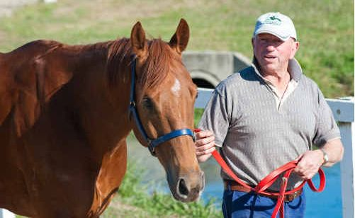 Trainer Ken Lantry is happy to be back in Coffs Harbour leading Belford Boy around the stables.