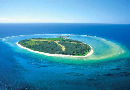 This is Lady Elliot Island, where five jobs are up for grabs.