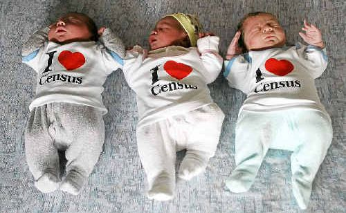 Newborn babies (from left) Aiden Watson, Llawana Collins and Bailey Sale wear their 'I Heart Census' shirts just in time for tonight's census, in which each one will be counted.