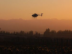 Choppers frost fighting for NZ wineries