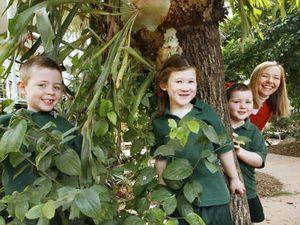 Fresh start for school's backyard