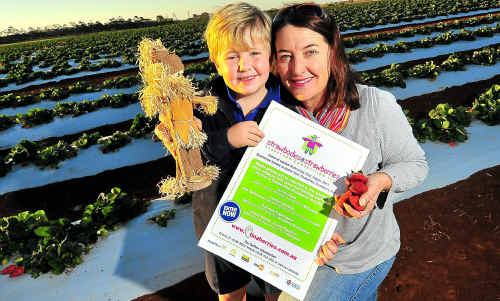 Mack and Tina McPherson can't wait to see the creative scarecrows that will inhabit Tinaberries strawberry farm over the next few weeks; and (inset) Mack with his entry in last year's Strawbodies in the Strawberries.