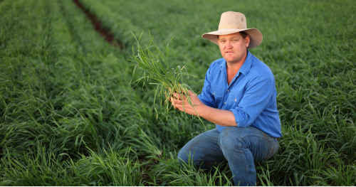 Golden Triangle farmer Andrew Bate has attacked the State Government for continuing to hand out coal exploration permits on Strategic Cropping Land.