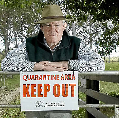 Pimlico cane farmer Frank Curran's property is under strict quarantine after two of his horses died from the hendra virus.