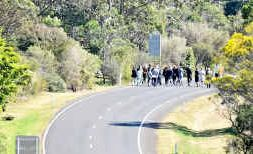 Jury members in the Dominic Hodal trial view the scene of the May 2009 crash on the New England Highway yesterday.
