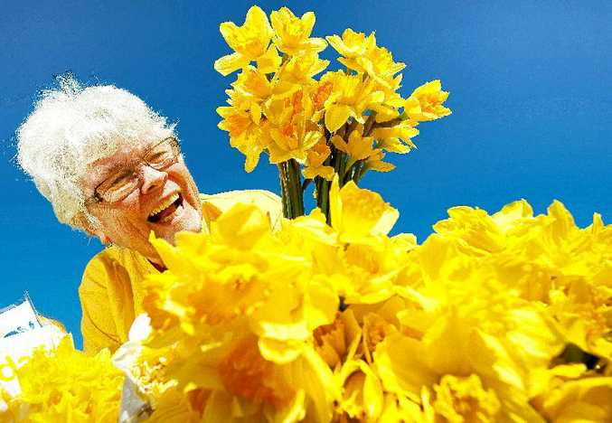 Kathy Derrett will be among scores of volunteers selling beautiful blooms for Daffodil Day.