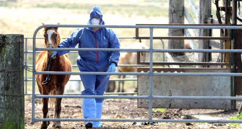 Biosecurity has said its quarantine procedures protect man and animal.