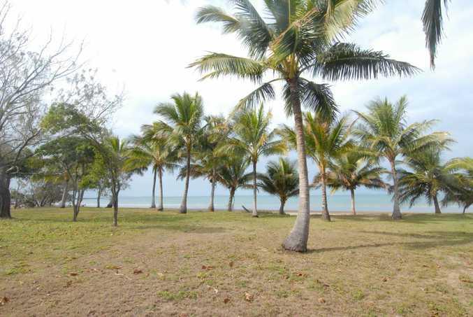 Palms at Seaforth.