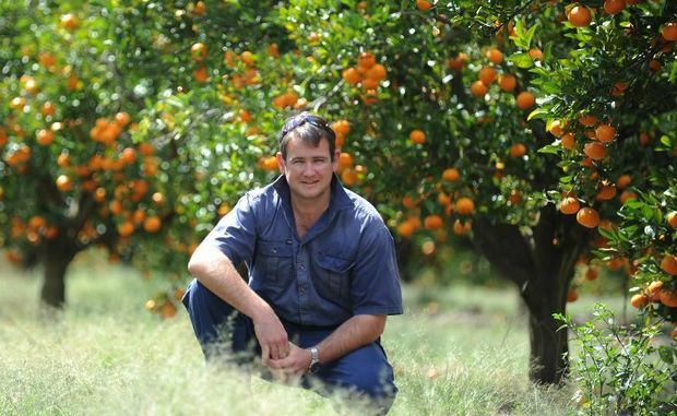 Alastair Mullett has just bought back Monduran Orchards, which had been in his family for five generations