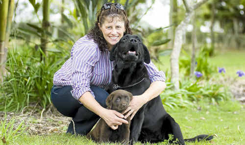 Labrador breeder Carole Olive, with puppy Cookie and Chester, says puppy farms should have to meet registered breeders' guidelines.