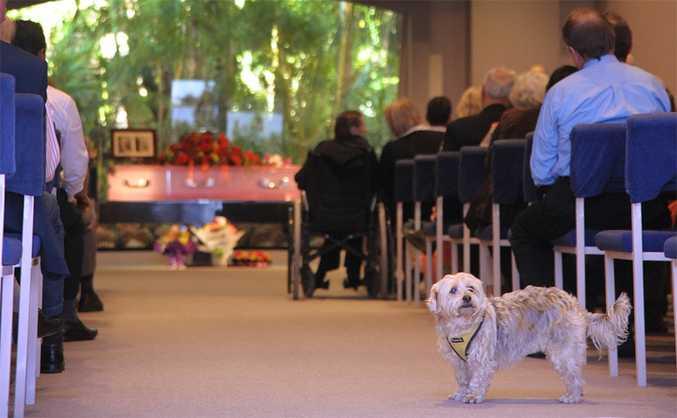 Violet Barben's beloved dog Honey at her funeral on Monday.