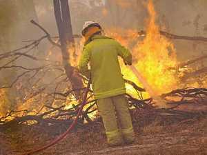 Firies are fine, says Gallant