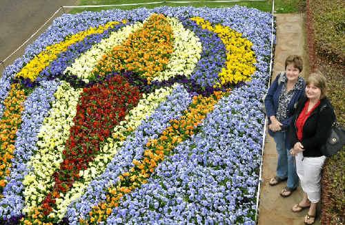 Cartoon Wonderland Blooms In Park Northern Star