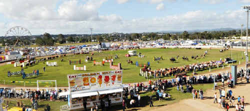 The viability of the Gympie Show could be threatened if the Ipswich Show moves to the same dates in May.