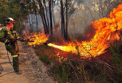 A wet summer has left Queensland with a higher fuel load and possibly greater fire hazard as the weather warms up again.