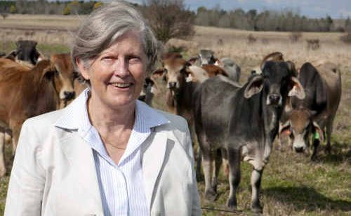 Beef CRC's Dr Heather Burrow fears for the future of beef genetics research after its failure to win government funds.