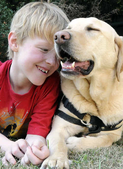 Jordan Schuh and his autism-assistance dog Axle will be heading to school together next term.