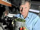 Principal horticulturist Mark Herrington is developing strawberry varieties for the future.