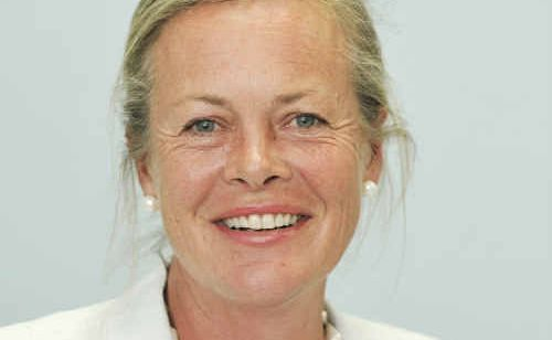 Fiona Leviny is to seek pre-selection for the seat of Clarence for the National Party.