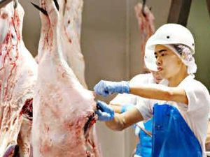 Gympie leads nation in food safety