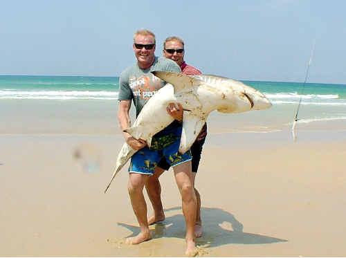 Mick De Rooy holds up the 100kg bronze whaler shark he caught while beach fishing on Fraser Island. He later released the big bopper back into the surf.