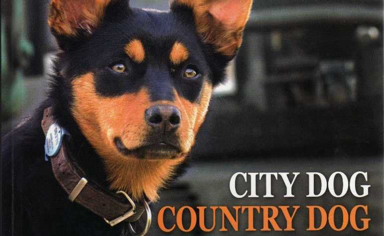 City Dog Country Dog compares pampered city pooches and faithful farm dogs.
