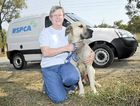 Friends of the RSPCA's Corinne Hayter is raising funds for a new van.
