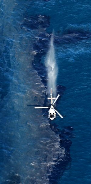A helicopter sprays dispersant on the oil slick that has started leaking from the container ship, Rena, which is stuck on a reef about 12 nautical miles off the coast of Tauranga.