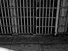 Stelling has had his bid to reduce his jail sentence refused.