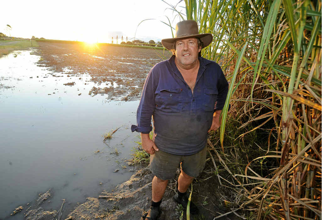 Bundaberg Canegrowers chairman Alan Dingle is looking forward to a bumper crop next year as the 2011 crush comes to a close.