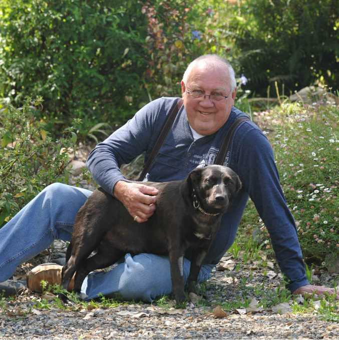 Copmanhurst resident Bill White with his dog Belle which recently killed two brown snakes but was bitten in the process.