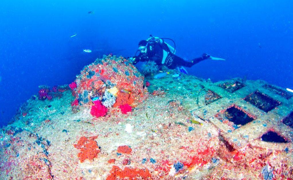 A diver explores the ex-HMAS Brisbane Conservation Park.