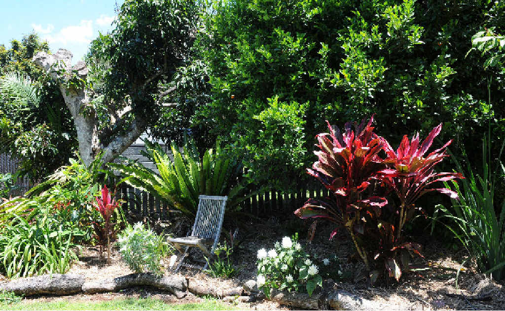 A section of the garden of Sasha and Scott Murchison, 27 Main St, Clunes open this Saturday and Sunday from 10am to 4pm.