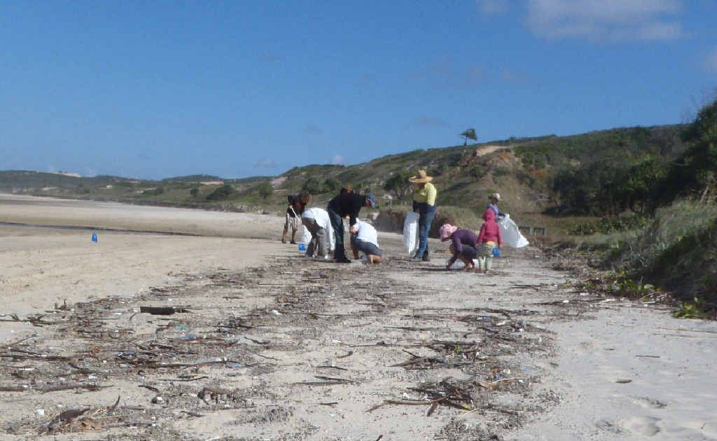 Volunteers go about the task of removing washed-up debris from a beach and will do the same at Kemp Beach on November 6 and 20.