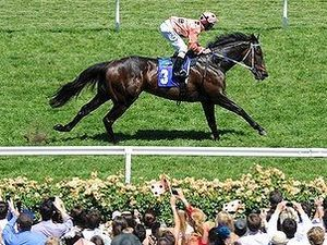 Black Caviar delivers