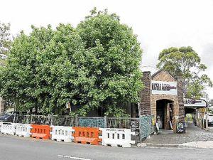 Mayor saves street's trees