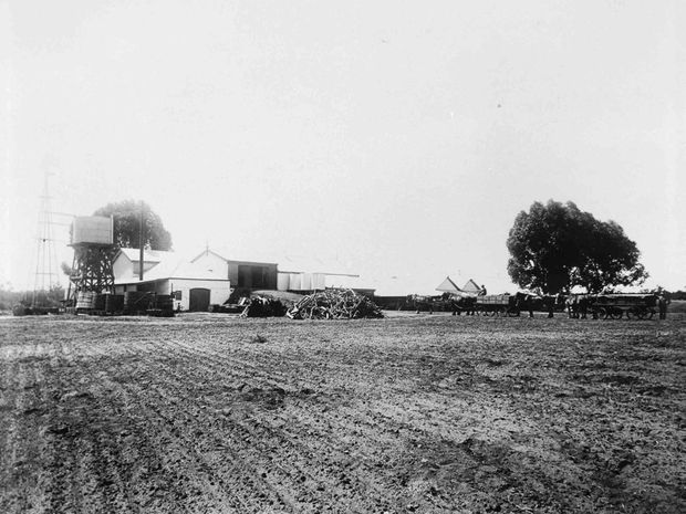 Early work on Houghton's Swan Valley property in days before cars and trucks.