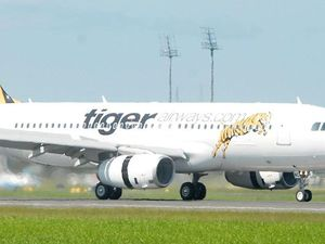 Tiger plane makes emergency landing after 'strange odour'
