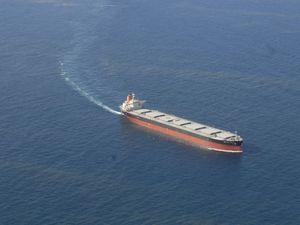 Concerns for harbour health
