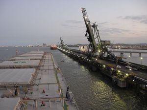 Trawlerman sues port authority