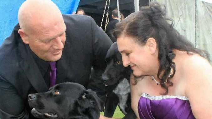 Top Dog Is Best Man Warwick Daily News