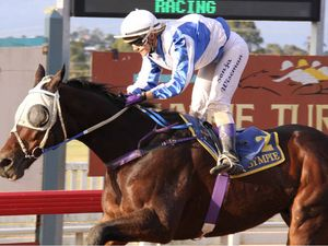 Champion galloper out of magic