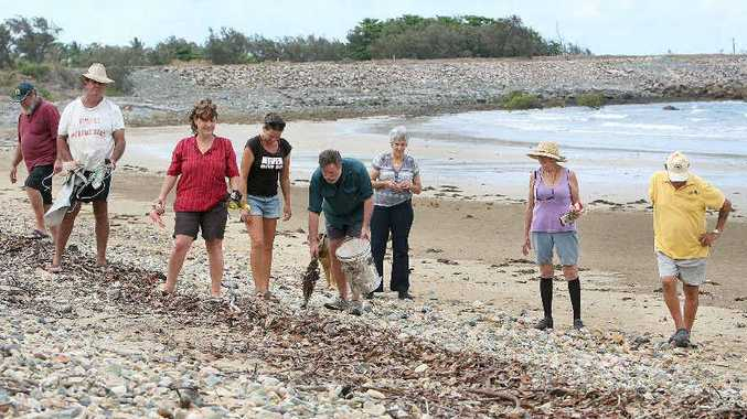 CONCERNED: Residents Lee Gallagher, Tom Liddell, Jenny Tandy, Donna Jackson, Peter Dallas, Lynette Gallagher, Gloria Nelson and Les Nelson clean up Half Tide Beach, which is often covered in debris from the nearby coal terminals.