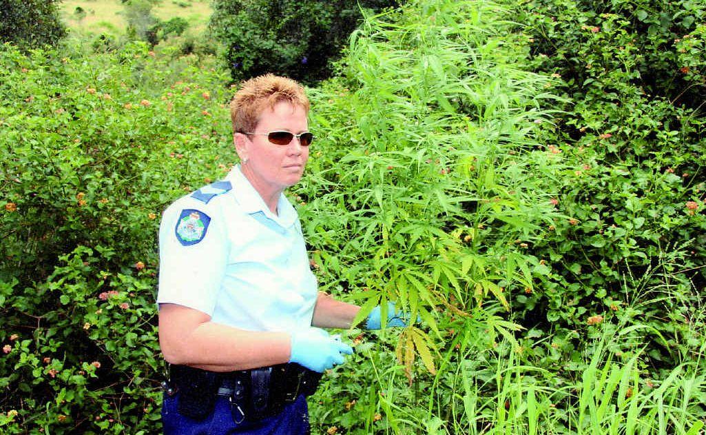 Acting Senior Sergeant Liz Burns-Hutchison at the cannabis plantation at Minden.