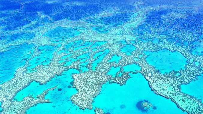 Hardy Reef, Whitsundays.