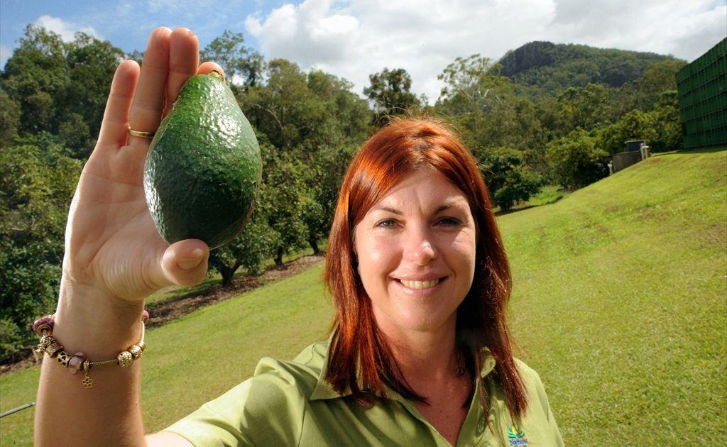 Avocado grower Ros Smerdon, CEO of Natures Fruit Company.