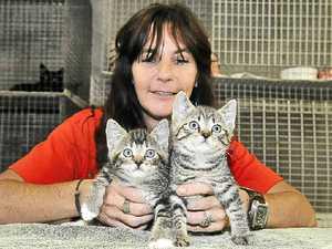 Dumped pets inundate RSPCA