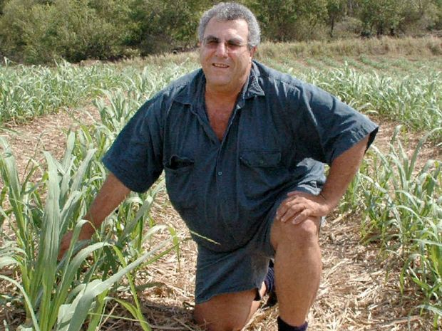 Mackay Canegrowers chairman Paul Schembri said the region's cane farmers had shown resilience after two bad seasons.