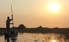 Gliding across the tranquil waters of the Okavango in a traditional mokoro.